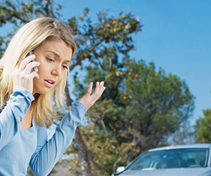 Как возместить ущерб, если на машину упало дерево